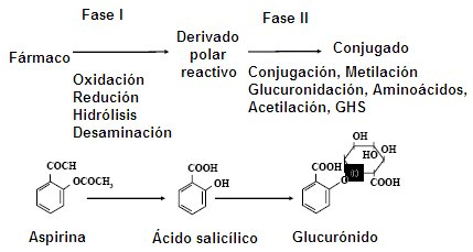 haloperiodol