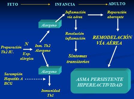 Signos y Sintomas del Asma - geosaludcom