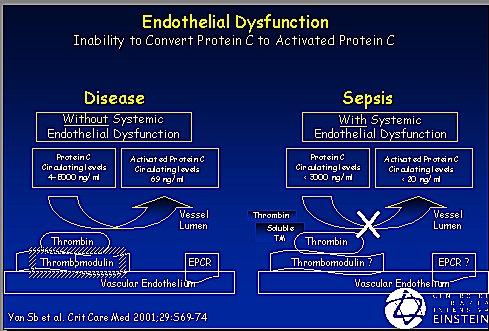 Fisiopatología: coagulopatía e injuria endotelial en la ...