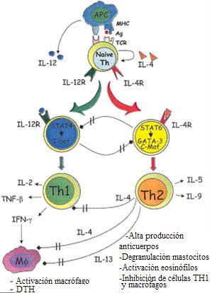 Que sustituir el sol a la psoriasis