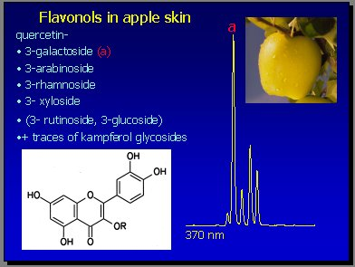 Antioxidantes polifenólicos naturales de la dieta - Medwave
