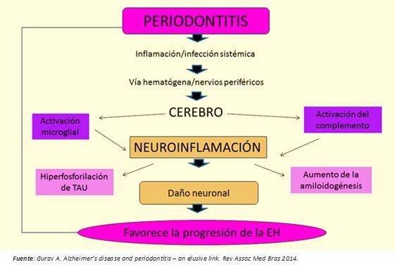 Periodontitis Como Determinante Del Inicio Y Progresi 243 N De