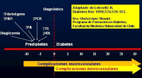diabetes mellitus tipo 2 y complicaciones pdf