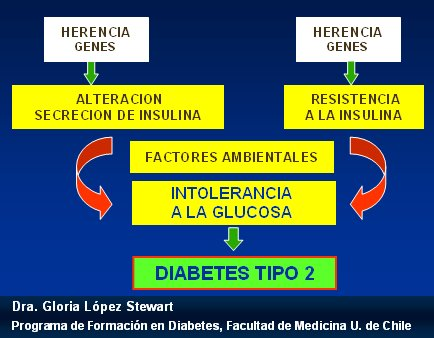 etiología diabetes melitus scribd