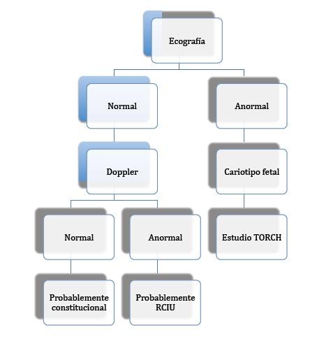 restriccion del crecimiento intrauterino pdf