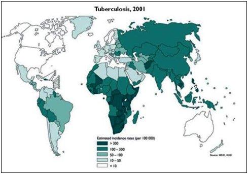 Inmigración y salud: asistencia sanitaria al niño ...