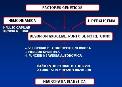 diabetes mellitus tipo 2 con tratamiento de polineuropatía diabética