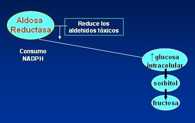 polioles tipo diabetes