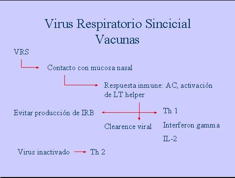 vacuna para el virus sincitial respiratorio