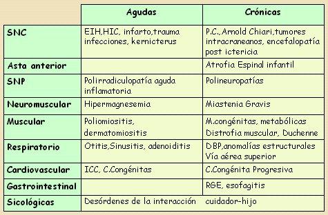 Succión y deglución: anatomía y fisiología - Medwave