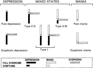 manic depressive illness goodwin pdf