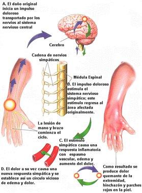 Si el dolor en el lado izquierdo detrás en el campo de los riñones y el riñón